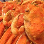 セイコ蟹、解禁です。